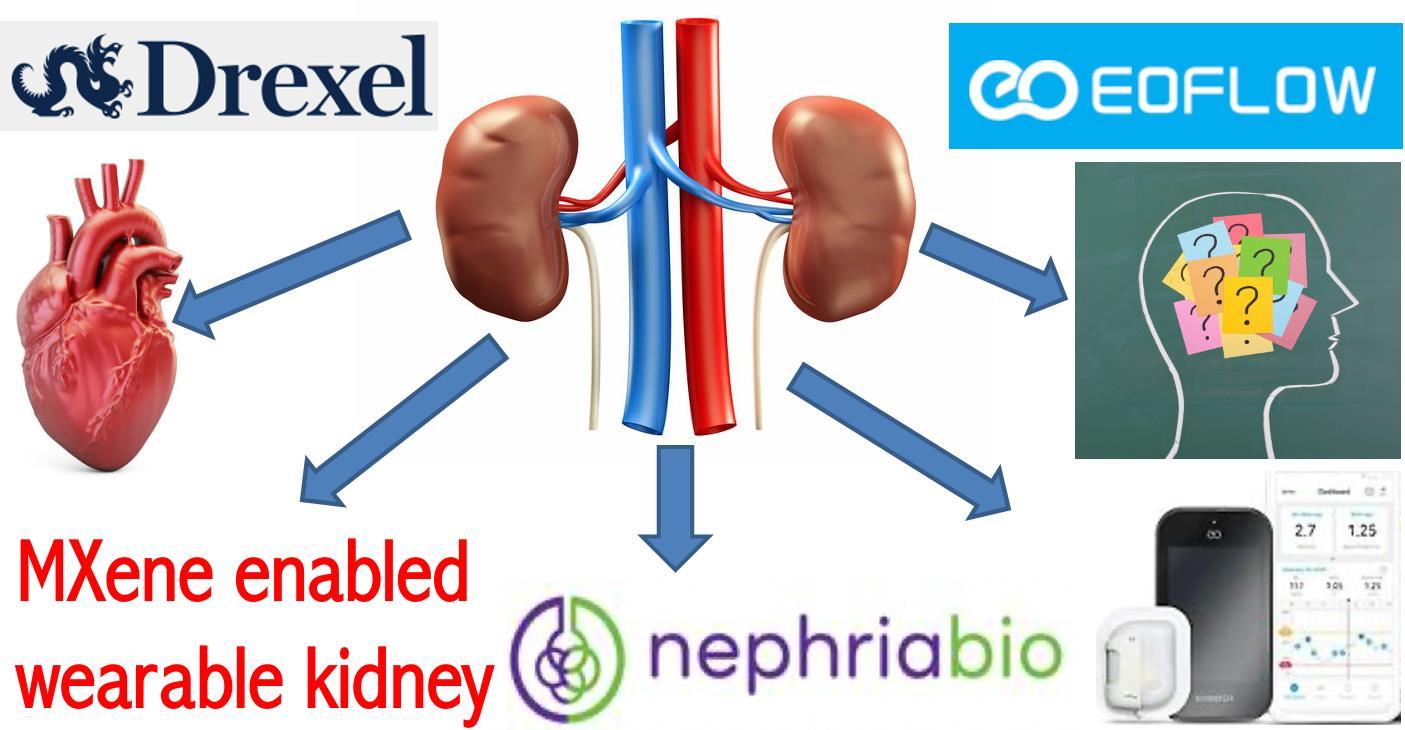EOFlow's Subsidiary Uses MXene Material for Development of Wearable Dialysis System
